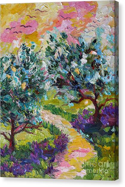 Impressionist Olive Trees And Lavender Path Canvas Print