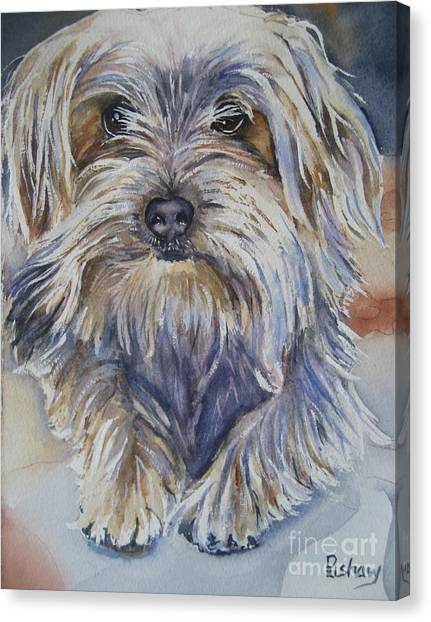 Watercolor Pet Portraits Canvas Print - Ollie by Patricia Pushaw