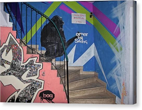 Omer Tdk Sdeng Canvas Print