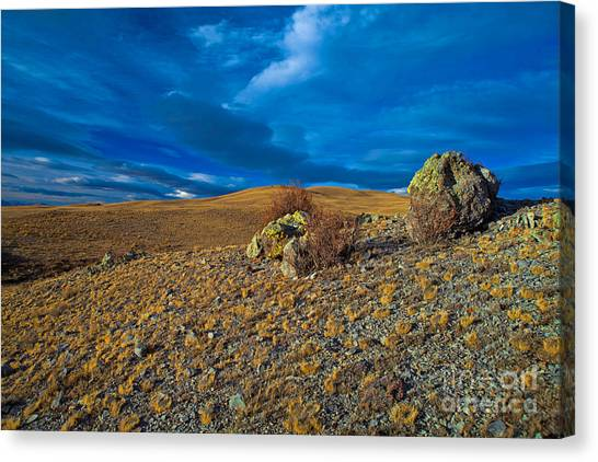 On A Blue Day Canvas Print