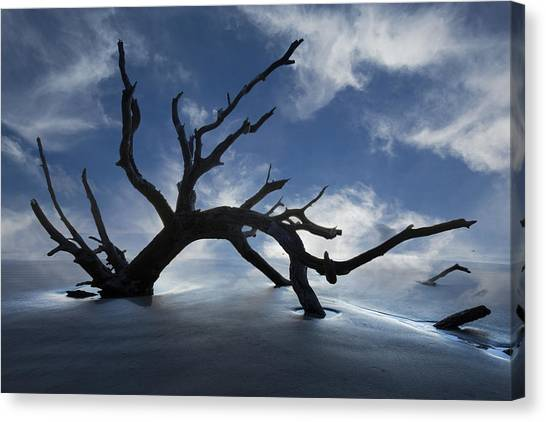 Canvas Print - On A Misty Morning by Debra and Dave Vanderlaan