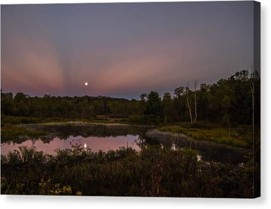 On Our Moonlight Drive Canvas Print