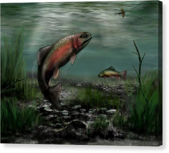 On The Attack - Rainbow Trout After A Fly Canvas Print