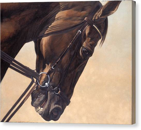 Equestrian Canvas Print - On The Diagonal by JQ Licensing