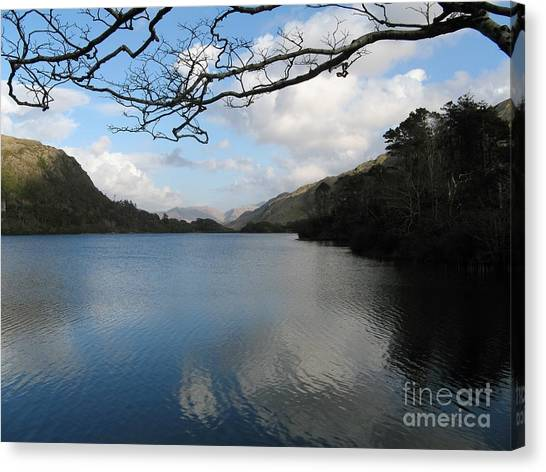 On The Drive To Connomarra Canvas Print