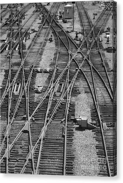On The Right Track? Canvas Print