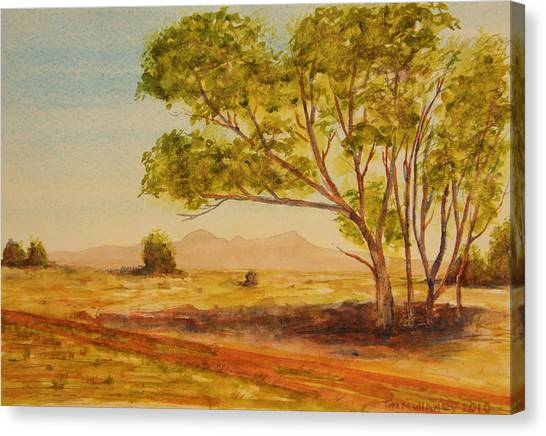 On The Road To Broken Hill Nsw Australia Canvas Print