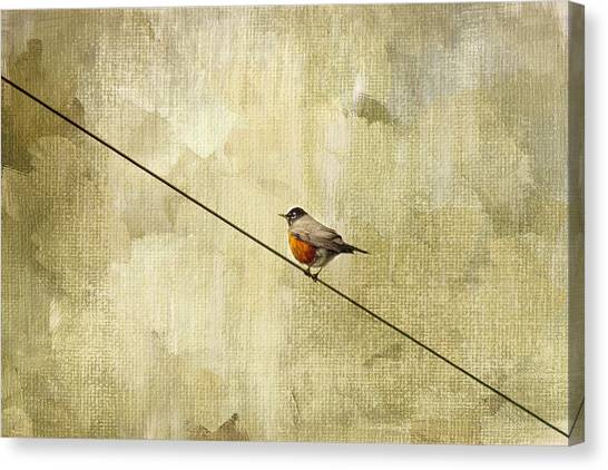 Winter Birds Canvas Print - On The Wire by Rebecca Cozart