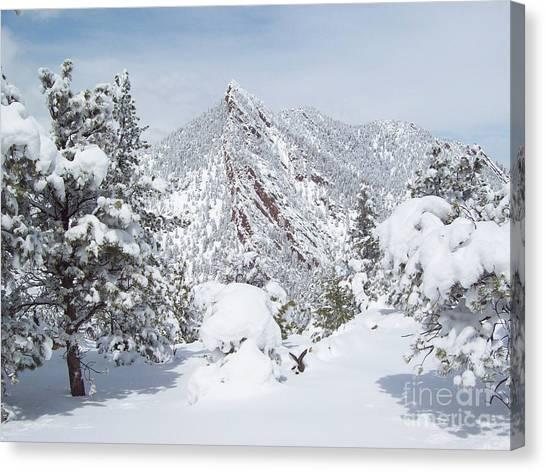 On Top Of Bear Peak Snow Mountain  Canvas Print