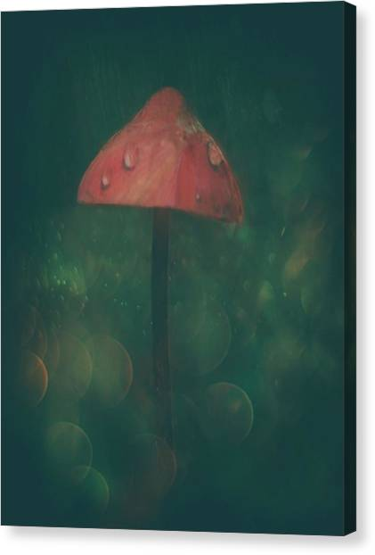 Mushrooms Canvas Print - Once Upon A Time... by Delphine Devos