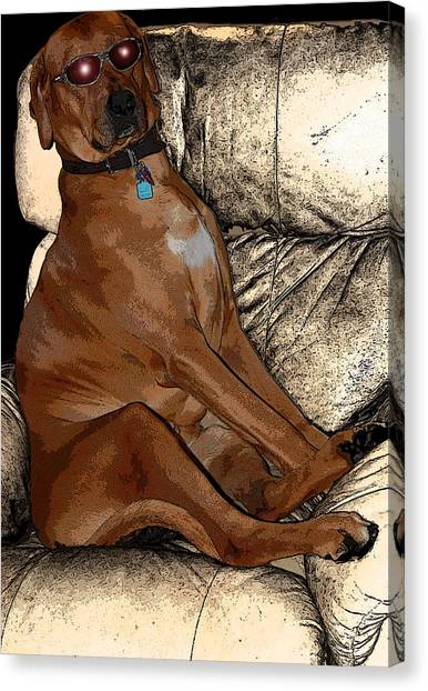 One Cool Dog Canvas Print