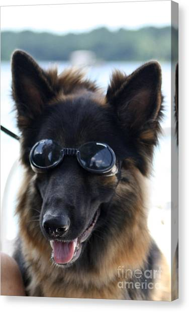 One Cool Dude Canvas Print