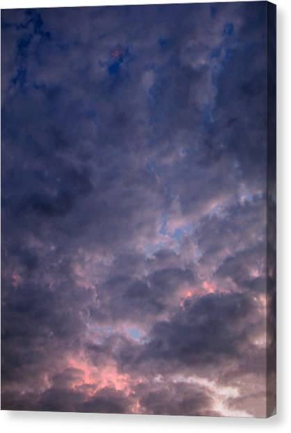 Finally It Rained In Texas Canvas Print