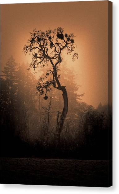 One Stands Alone Canvas Print