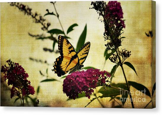 One Summer Day  2 Canvas Print