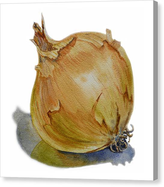 Vegetables Canvas Print - Onion by Irina Sztukowski
