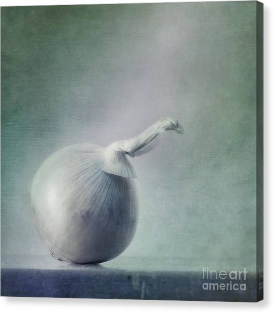 Vegetables Canvas Print - Onion by Priska Wettstein