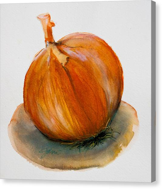 Onion Study Canvas Print