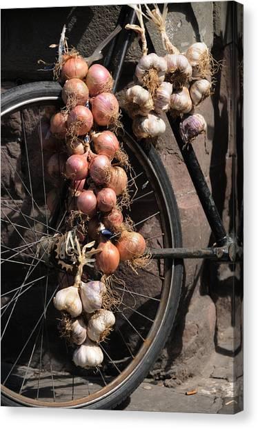 Onions And Garlic On Bike  Canvas Print