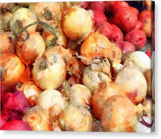 Onions Closeup Canvas Print by Susan Savad