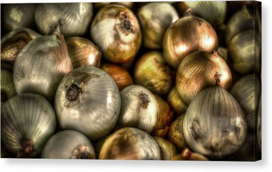 Onions Canvas Print - Onions by David Morefield