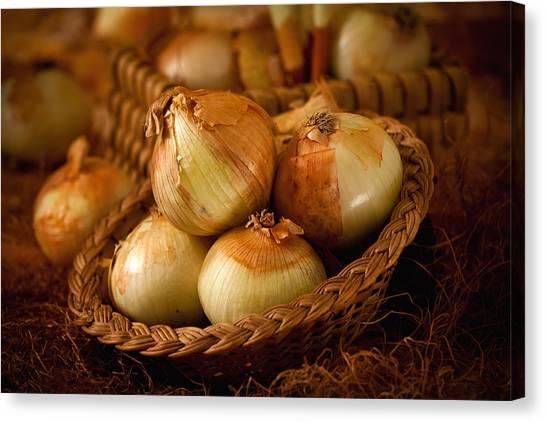Onions1965 Canvas Print
