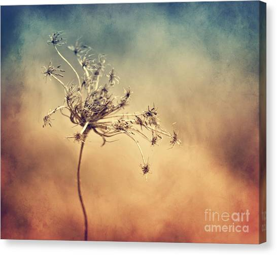 Only Canvas Print by Diana Kraleva