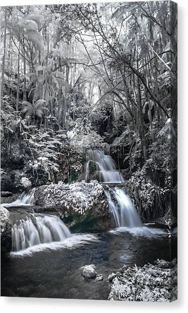 Onomea Falls In Infrared 2 Canvas Print