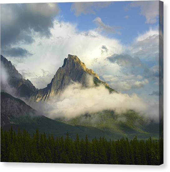 Mountain Ranges Canvas Print - Opal Range In Fog Kananaskis Country by Tim Fitzharris
