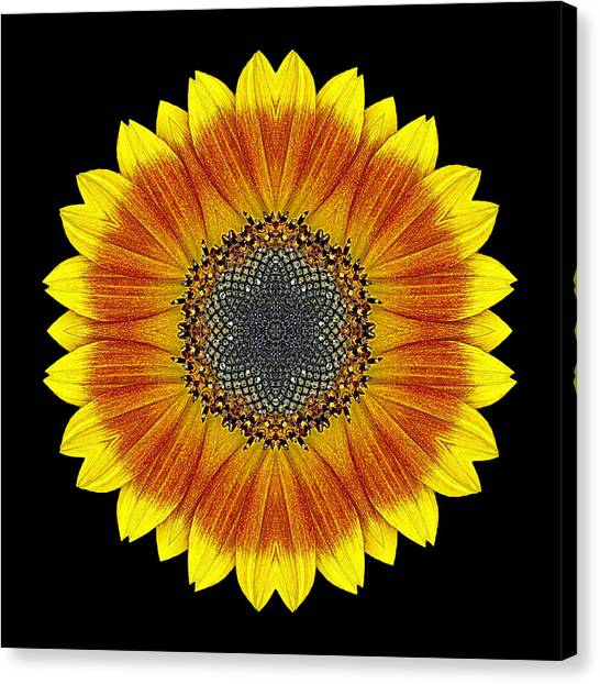 Orange And Yellow Sunflower Flower Mandala Canvas Print