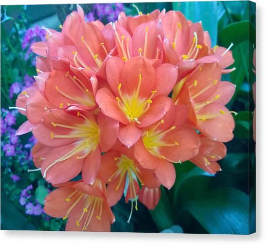 Orange Bouquet Canvas Print