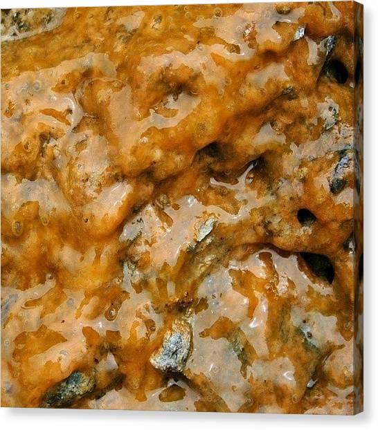 Fluids Canvas Print - #orange #brown #wet #moist #life #algae by The Texturologist