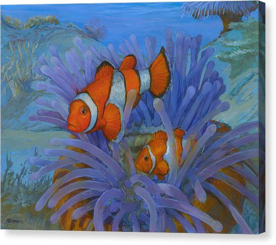 Orange Clownfish Canvas Print by ACE Coinage painting by Michael Rothman