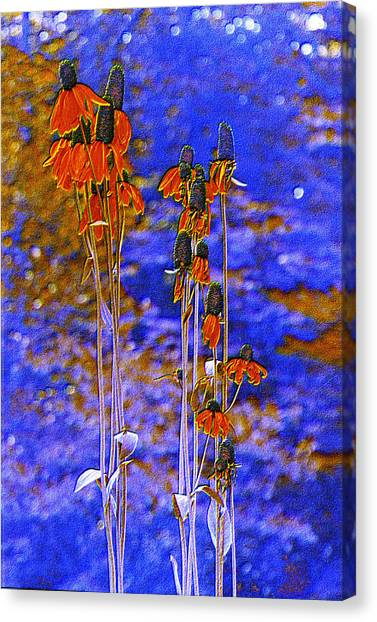 Orange Cones Canvas Print by Jan Amiss Photography
