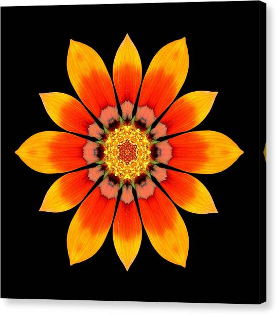 Orange Gazania I Flower Mandala Canvas Print