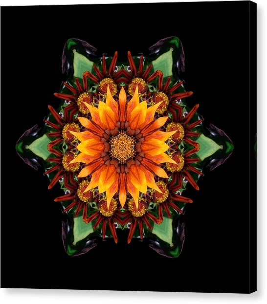 Orange Gazania IIi Flower Mandala Canvas Print
