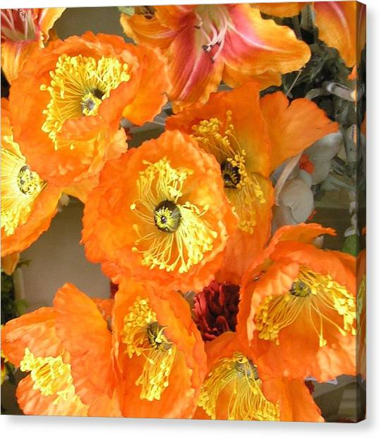 Orange Joy Canvas Print