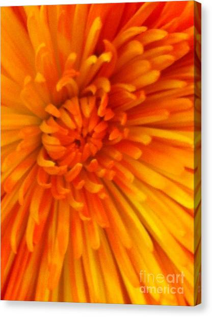 Orange Light Canvas Print