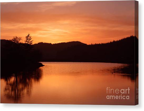 Orange Love Canvas Print by Sheldon Blackwell