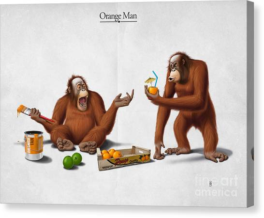 Orangutan Canvas Print - Orange Man by Rob Snow