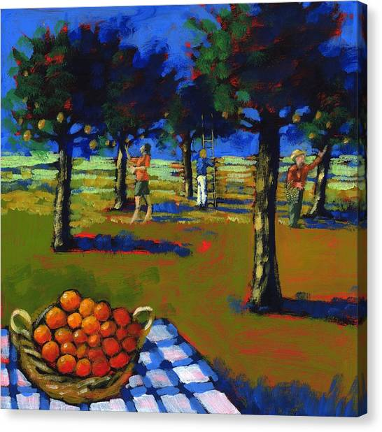 Fruit Baskets Canvas Print - Orange Picking by Paul Powis