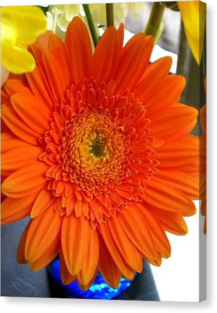 'orange Sun' Canvas Print