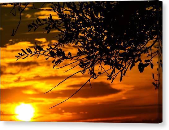 Orange Sunset Canvas Print