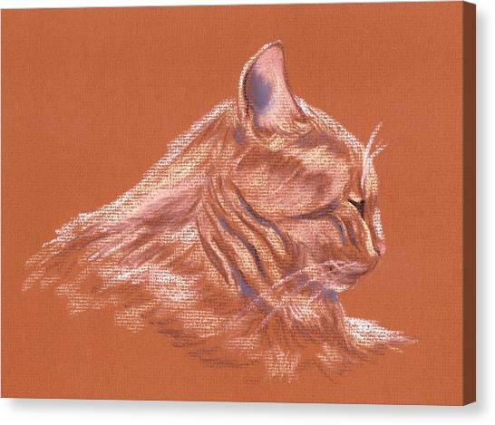 Orange Tabby Cat In Profile Canvas Print by MM Anderson