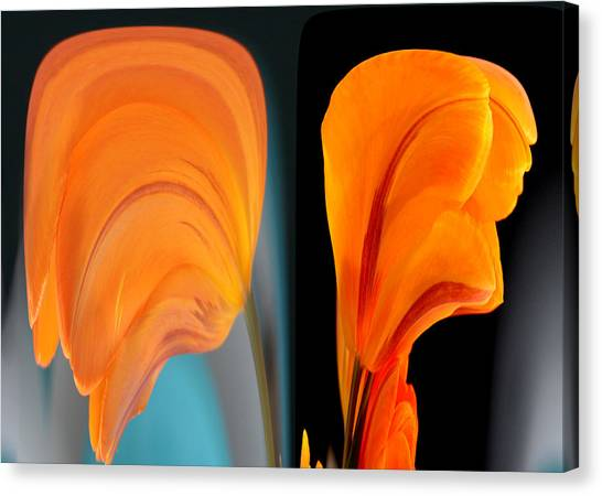 Canvas Print featuring the photograph Orange Tulip Fellows by Jim Baker