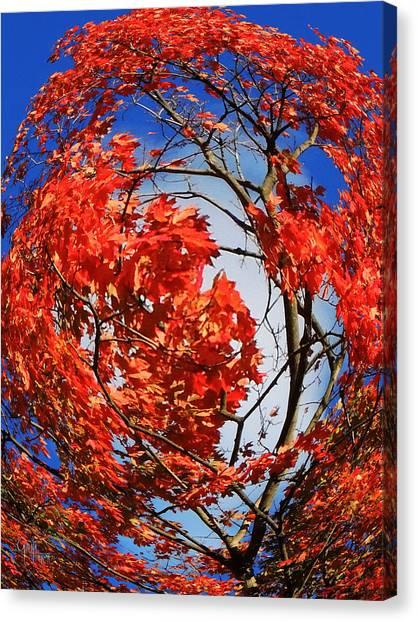 Orange Twirl -2 Twin Canvas Print