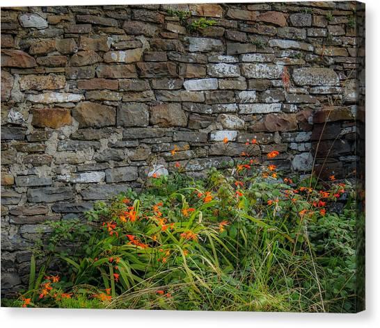 Orange Wildflowers Against Stone Wall Canvas Print