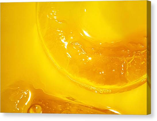 Juice Canvas Print - Orange With Ice And A Slice by Natalie Kinnear