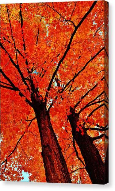 Orange...the New Green Canvas Print