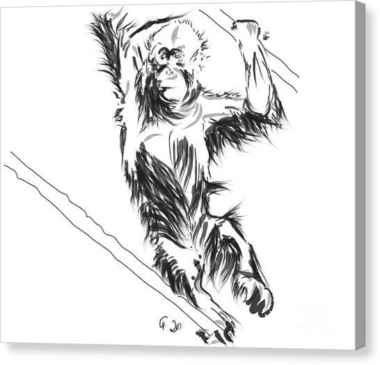 Orangutan 3 Canvas Print